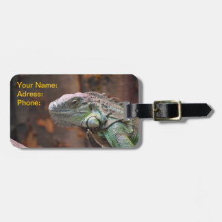 Luggage Tag with colourful Iguana Lizard