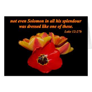 luke 12:27b and bright tulips card