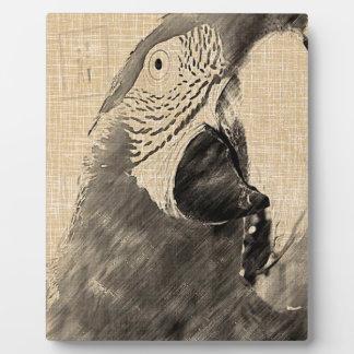 Lulu Macaw Sketch Photo Plaques