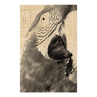 Lulu Macaw Sketch Stationery Paper