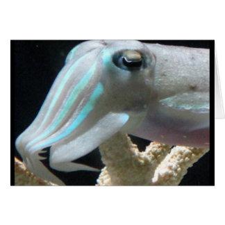 Luminous Cuttlefish Card