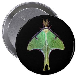 Luna Moth Pinback Button