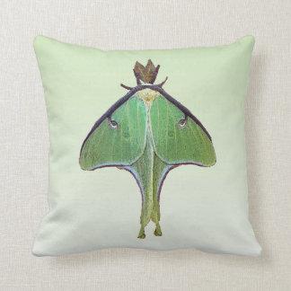 Luna Moth Cushion