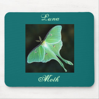 Luna Moth, Luna, Moth Mousepads