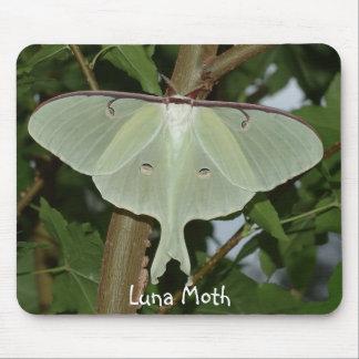 Luna Moth Mouse Pad