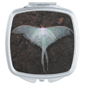 luna moth nature butterfly fairy fantasy dream mirror for makeup