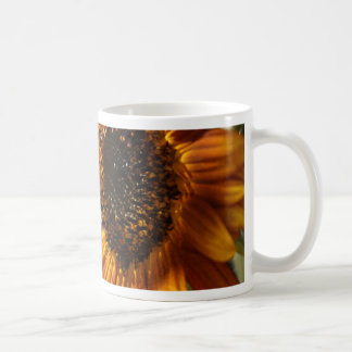 Lunar Moth Sun Landing Coffee Mug