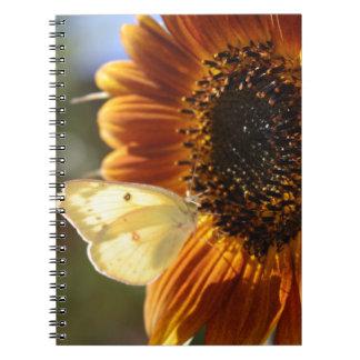 Lunar Moth Sun Landing Notebook