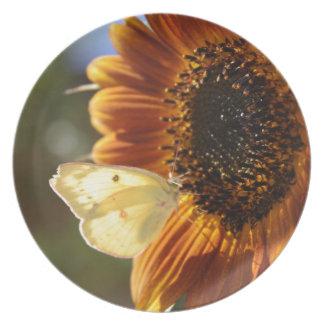 Lunar Moth Sun Landing Plate