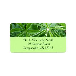 Lupin Leaves Beautiful Green Nature Address Label