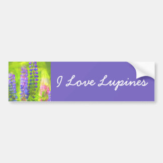 Lupines Bumper Sticker