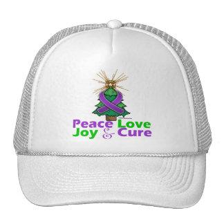Lupus Peace Love Joy Cure Hat