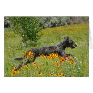 Lurcher Running Through A Flower Field - Card