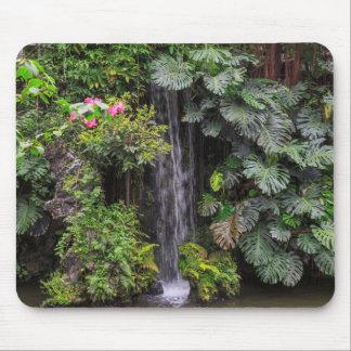 Lush Garden Waterfall, China Mouse Pad