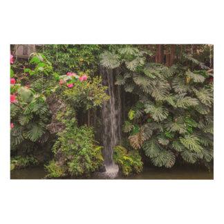 Lush Garden Waterfall, China Wood Prints