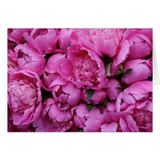 Lush Pink Peony Flowers Card