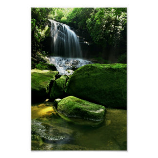 Lush Rain Forest Waterfall in Sunlight Poster