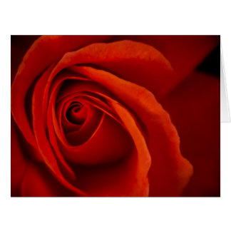 Lush Romance Greeting Cards