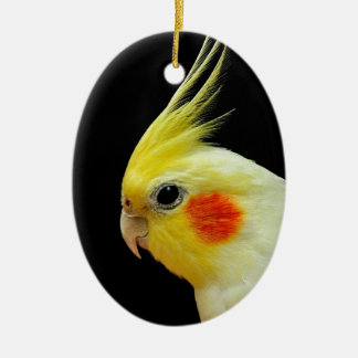 Lutino Cockatiel Ceramic Oval Decoration
