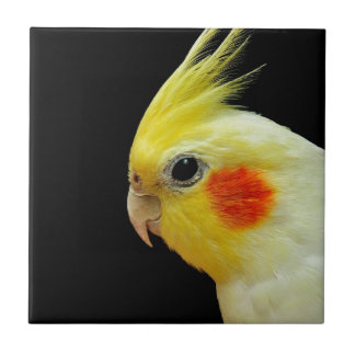 Lutino Cockatiel Small Square Tile