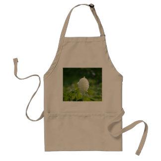 Luxuriant Bear Grass Standard Apron