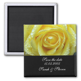 Luxury Wedding Yellow Rose Save the date Square Magnet