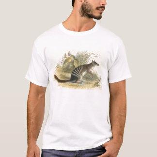 Lydekker - Banded Ant-Eater - Numbat T-Shirt