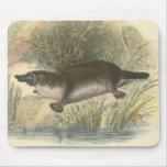 Lydekker - Platypus Mouse Mat