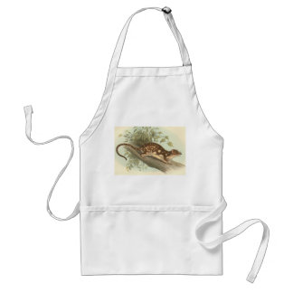 Lydekker - Spotted-Tail Dasyure Apron