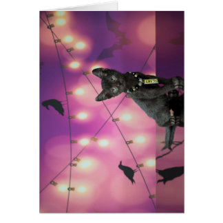 Lykoi Kitten & Crows Card