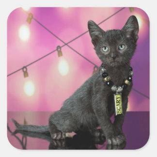 Lykoi Kitten & Crows Square Sticker