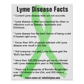 Lyme Disease Facts Educational Poster