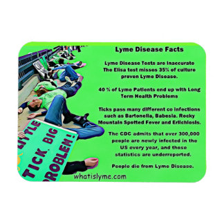 Lyme Disease Facts Protest Picture Magnet