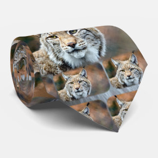 Lynx Bobcat Wildlife Predator Cat Tie