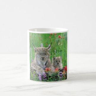 Lynx Cat & Kitten Cute Coffee Cup