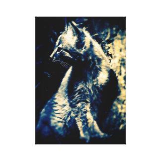 Lynx Cub Canvas Print