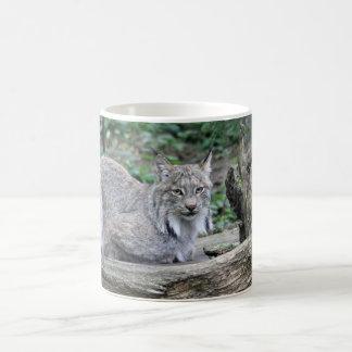 Lynx Custom Mug
