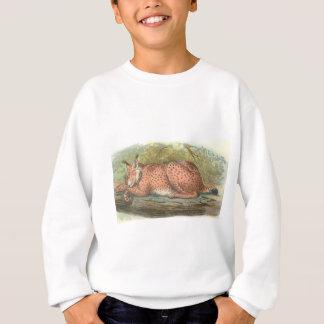 Lynx, Felis lynx Sweatshirt