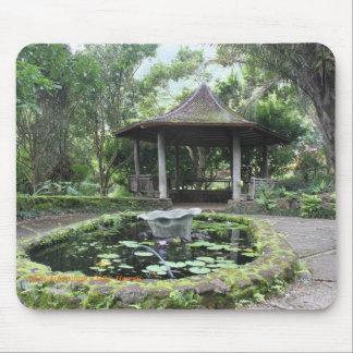 Lyon Arboretum Oahu Hawaii Botanical garden Mouse Pad