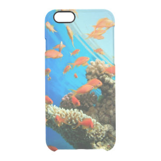 Lyretail anthias on coral reef clear iPhone 6/6S case