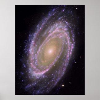 M81 Galaxy Poster
