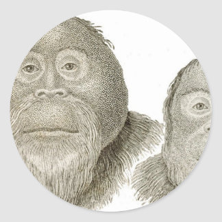 Ma & Pa - THE BABOON COUPLE Classic Round Sticker