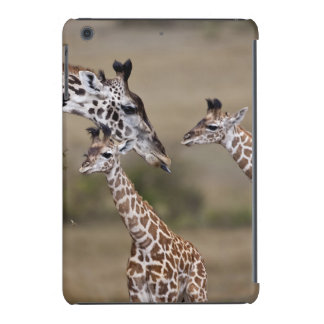 Maasai Giraffe (Giraffe Tippelskirchi) as seen iPad Mini Covers