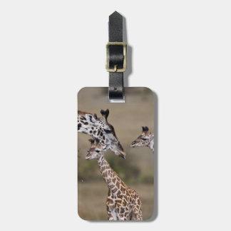 Maasai Giraffe (Giraffe Tippelskirchi) as seen Luggage Tag