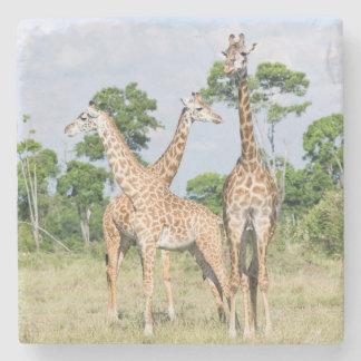 Maasai Giraffe Stone Coaster