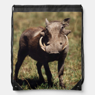Maasai Mara National Reserve, Desert Warthog Drawstring Backpack