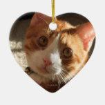 Mac Cat Photo Heart Ornament