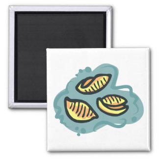 mac shells n cheese magnet