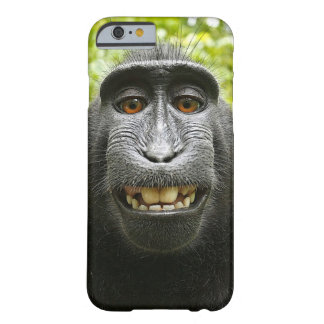 Macaque Iphone Case