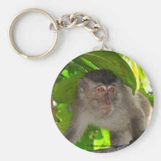Macaque Monkey in rainforest Keychain